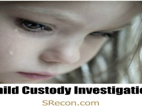 Child Custody Investigation